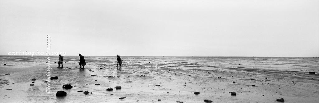 Jour de Pêche 5